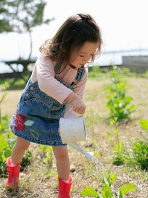 Kết quả hình ảnh cho bé trồng rau