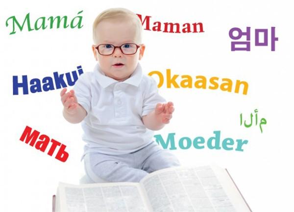 Trí thông minh ngôn ngữ
