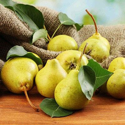 Không chỉ được biết đến là loại trái thanh mát, lê còn có tác dụng trị ho